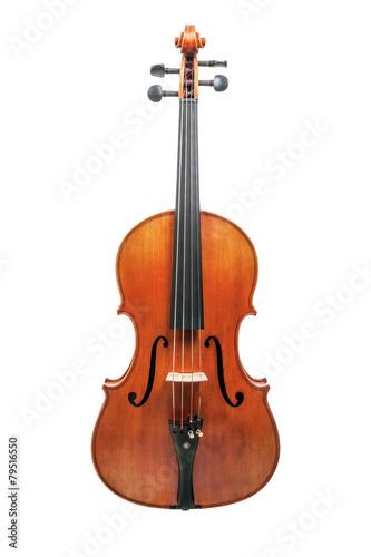 Viola - 79516550