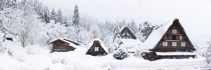 Japanese village at winter