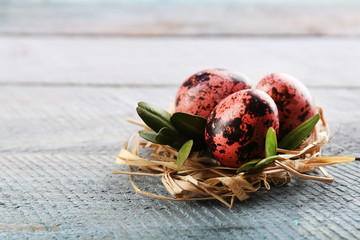Bird colorful egg in nest wooden background