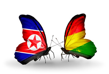 Two butterflies with flags North Korea and Bolivia