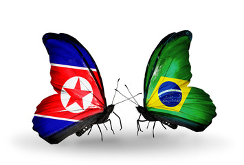 Two butterflies with flags North Korea and Brazil
