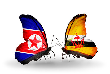 Two butterflies with flags North Korea and Brunei