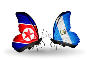 Two butterflies with flags North Korea and Guatemala
