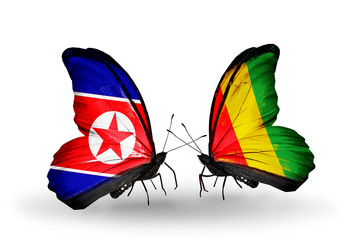 Two butterflies with flags North Korea and Guinea