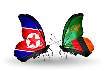 Two butterflies with flags North Korea and Zambia