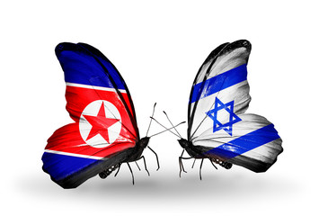 Two butterflies with flags North Korea and Israel