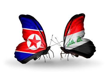 Two butterflies with flags North Korea and  Iraq