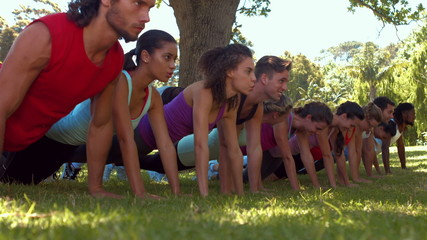 In high quality format fitness group doing push ups in park
