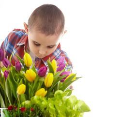 Little gardener boy, isolated on white