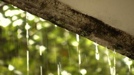 Roof Rain Humidity Damage