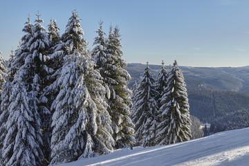Winterlandschaft im Harz im Winter