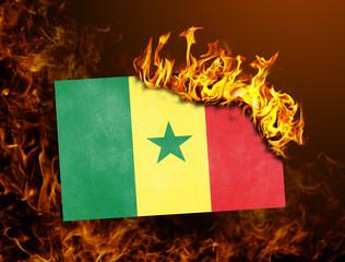 Flag burning - Senegal