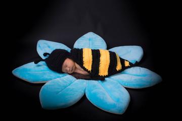 bébé habillé en abeille sur une fleur bleu