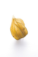 Physalis heap isolated on white