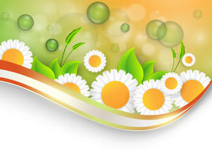 bright summer vector background