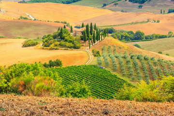 Typical Tuscany landscape,San Quirico d'Orcia,Italy,Europe