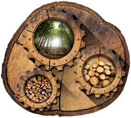 Lumber Industry - Gears on Tree Trunk
