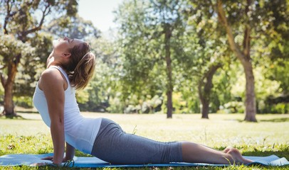 Fit woman doing yoga in the park
