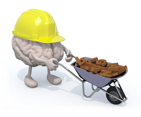 brain with arms, legs and workhelmet carries a wheelbarrow lette