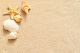 Seashells on sand poster