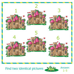 Find two identical pictures