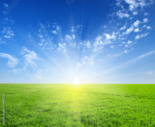 Fotobehang Platteland field and sun