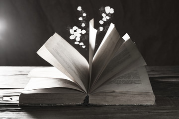 Open book with falling petals on table