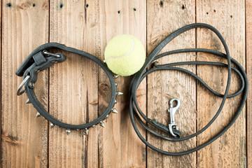 首輪とリードとテニスボール