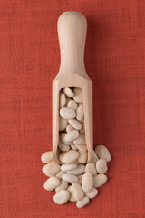Wooden scoop with white beans