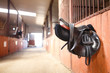 Leather saddle horse - 79565953