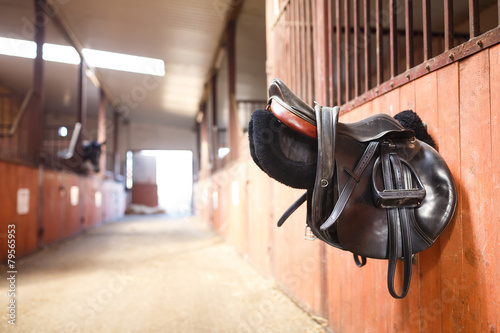 Fotobehang Paardensport Leather saddle horse
