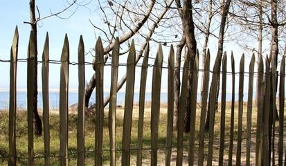 barrière de protection de la dune ,océan atlantique