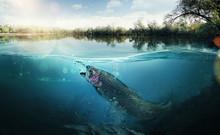 "Постер, картина, фотообои ""Fishing. Close-up shut of a fish hook under water"""