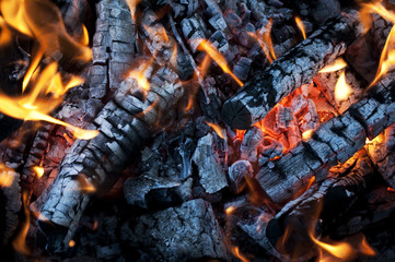 Fire from burning firewood with ashes and flames