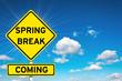 Spring break coming - 79586126