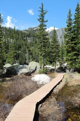 Hiking trail in Rocky Mountains, USA
