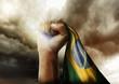 Povo Brasileiro não foge à luta - 79587715