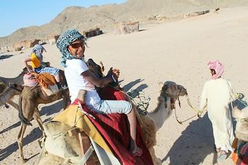 Девочка на верблюде