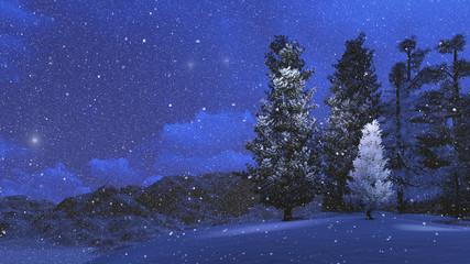 Winter night in the snowbound pinewood 1