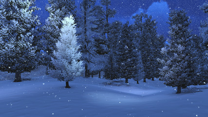 Winter night in the snowbound pinewood 4