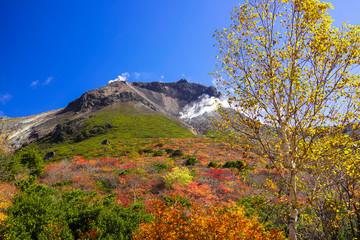 紅葉の茶臼岳