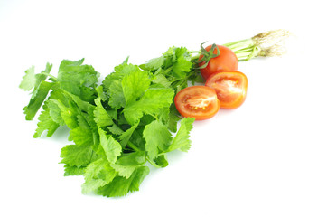 celery and tomato on white background