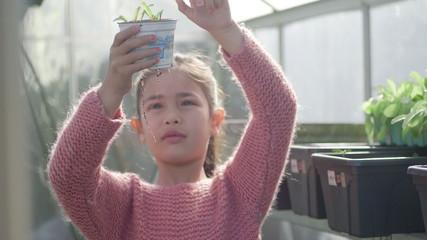 Girl holding plant pot