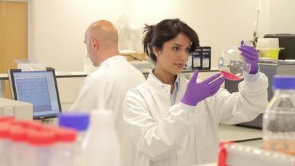 Scientist looking at liquid in laboratory