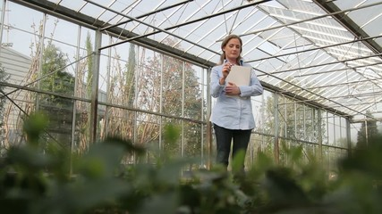 Scientist examining flora in a greenhouse