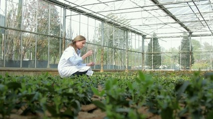 Female Scientist examining soil sample of flora in a greenhouse