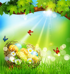 vector background with Easter nest and eggs on the meadow under