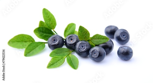 Blueberries with leaves - 79622536