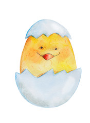 Chicken in egg. WatercolorHand drawing.