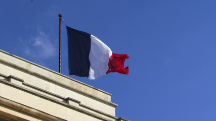 LS, Flag of France in wind